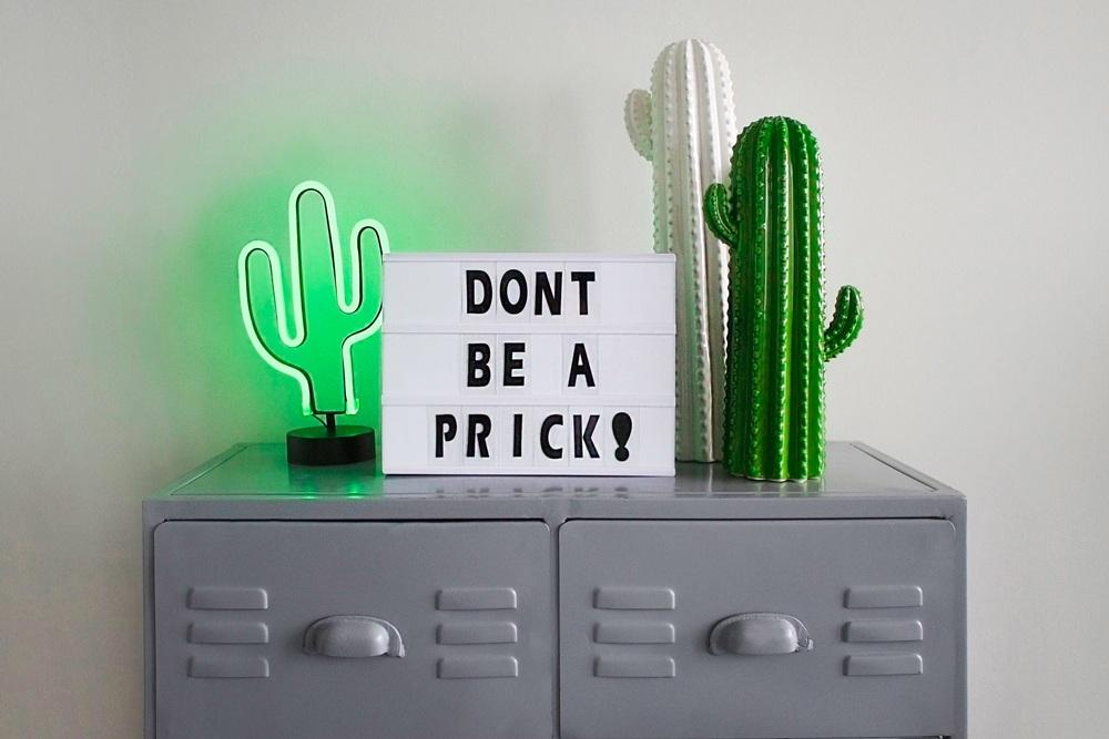 De beste cadeau ideeën voor cactusliefhebbers