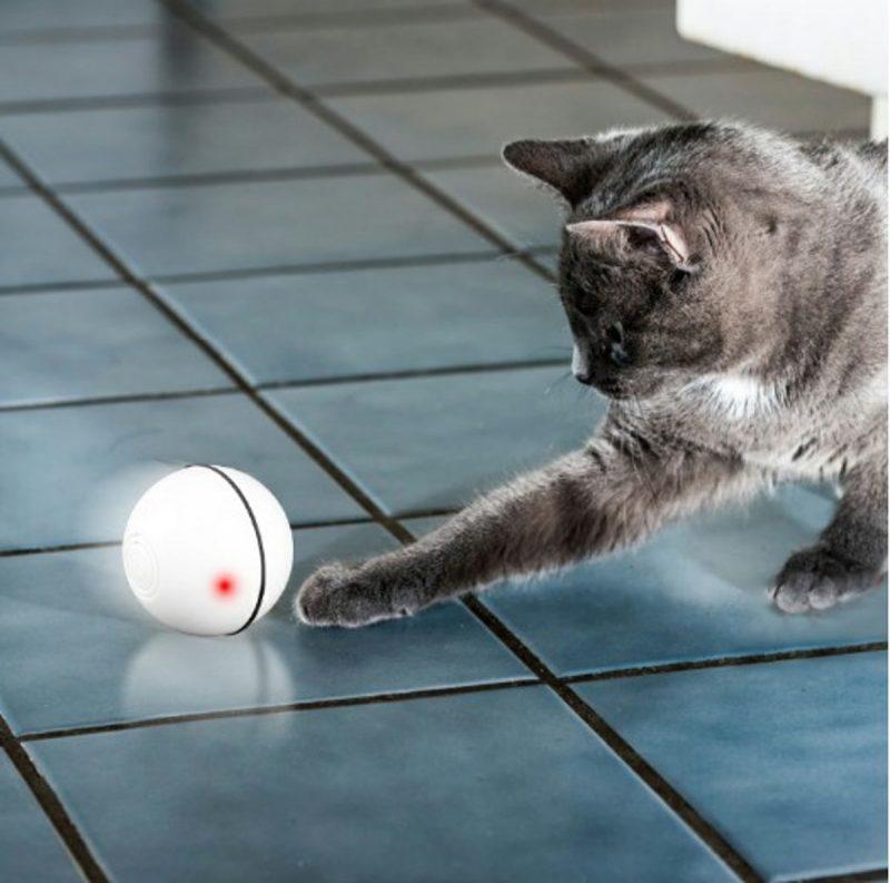 Automatisch, zelfbewegende bal voor kat