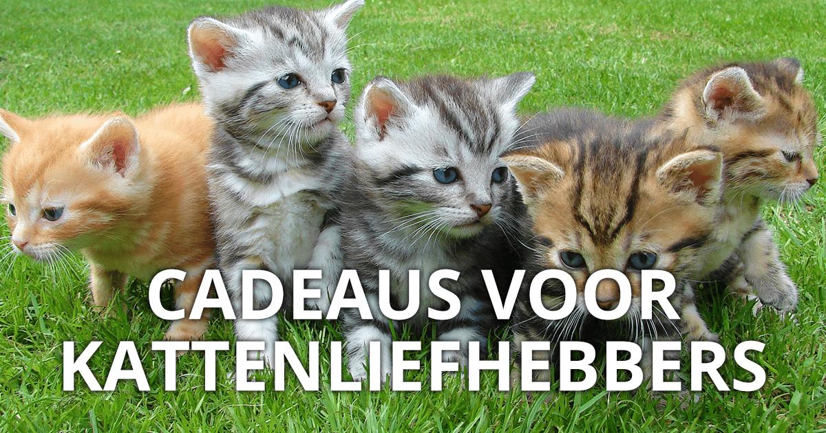 Cadeaus voor kattenliefhebbers